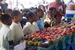 children-at-farmers-market